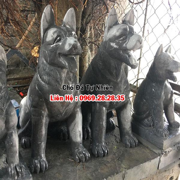 Chó canh gác cổng nhà